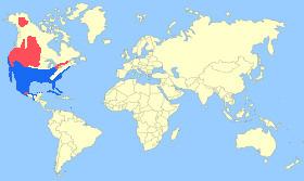Redhead Map